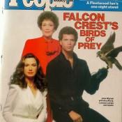 Falcon Crest: media hot!